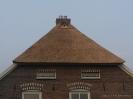 Uilenbord in rieten dak